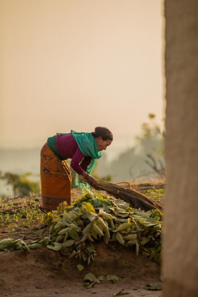 Gardening in Nepal